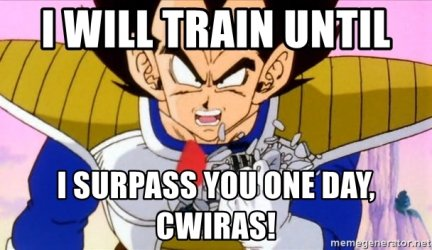 i-will-train-until-i-surpass-you-one-day-cwiras.jpg