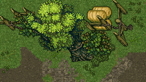 tree and fence.png
