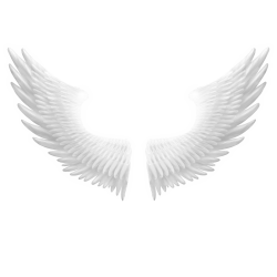 —Pngtree—snow white angel wings_6043696.png