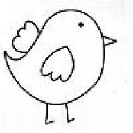 BIRDIE13